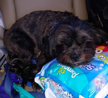 Diaper Pillow