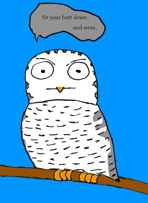 angry owl write