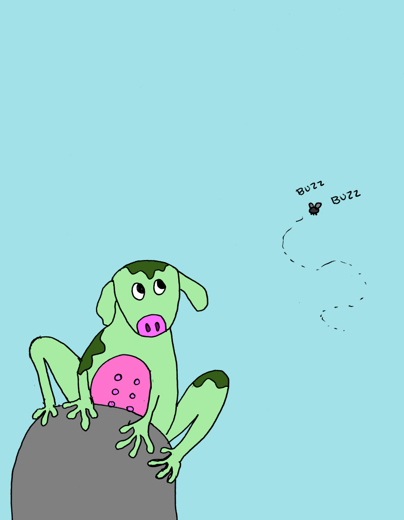 cow-frog.png