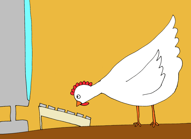blogger-chicken.png