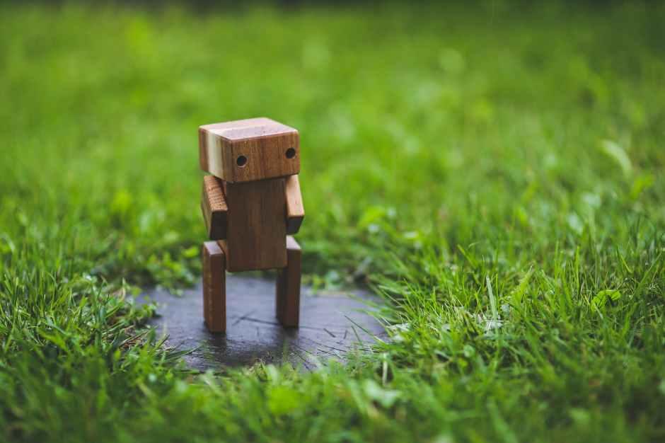 grass-lawn-green-wooden-6069.jpg
